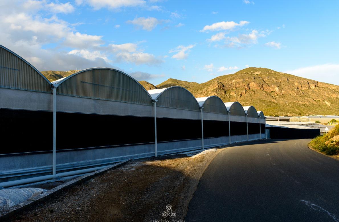 Becas arquitectos colegiados curso de verano ual 2018 - Colegio arquitectos almeria ...